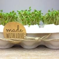 Kresse - Eier zu Ostern basteln DIY