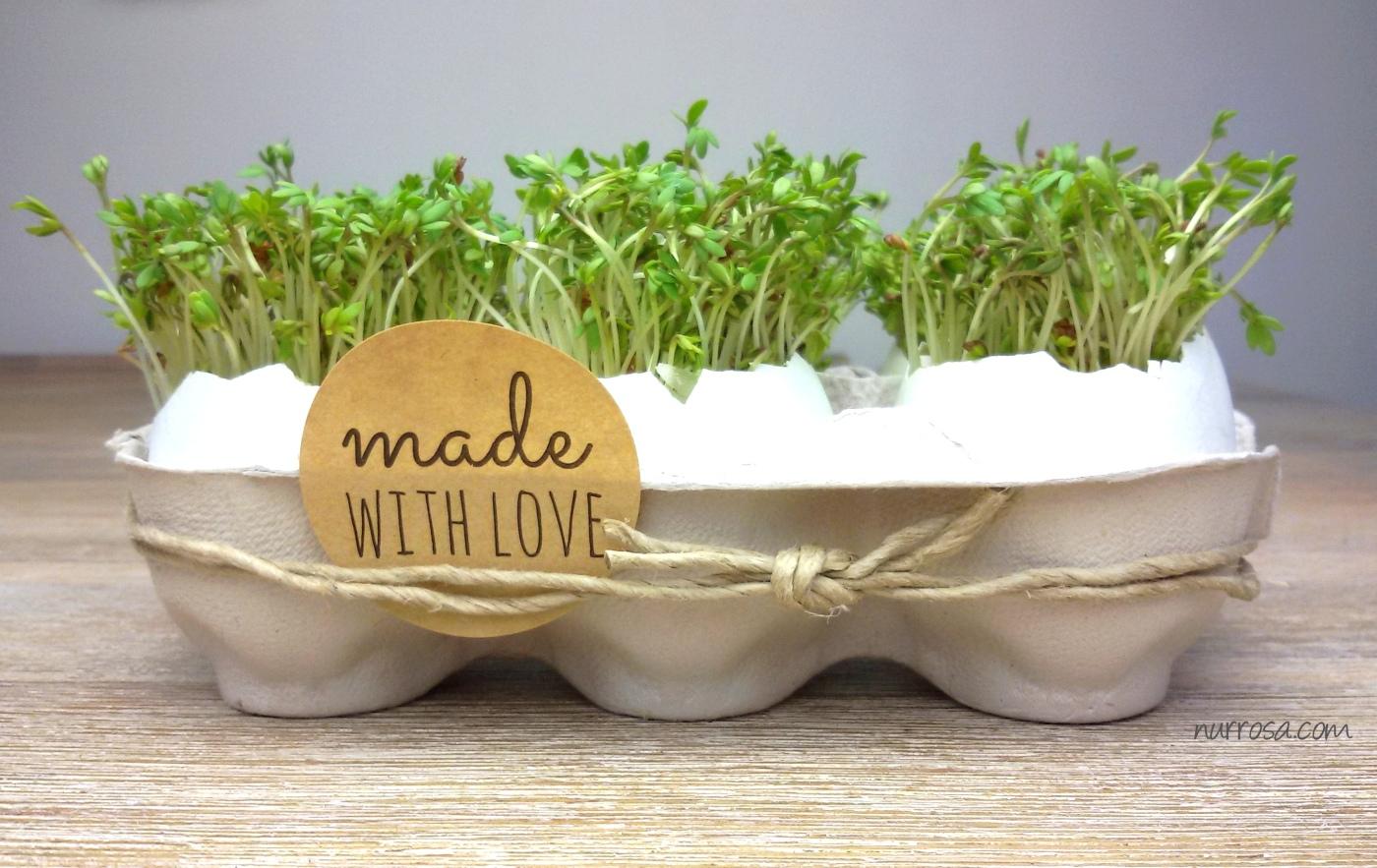 kresse eier zu ostern basteln diy nurrosa. Black Bedroom Furniture Sets. Home Design Ideas