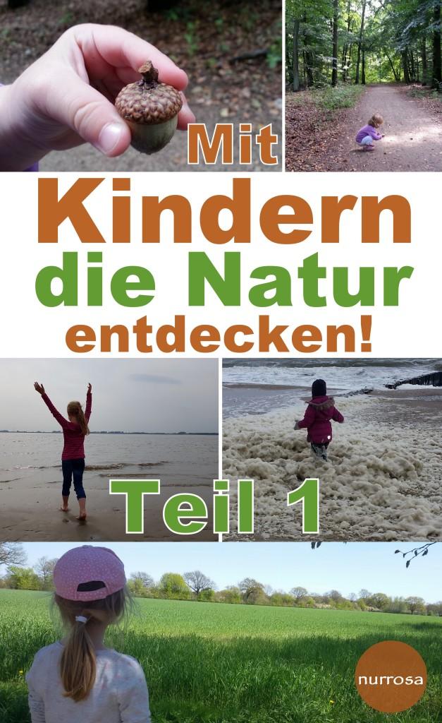 Mit Kindern die Natur entdecken Teil 1 - Pilze
