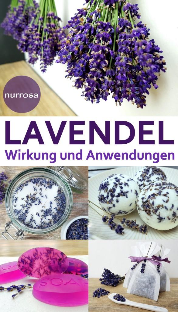 Lavendel Wirkung und Anwendungen Tipps